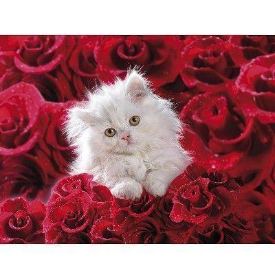 Кошка с цветами открытка с днем рождения 60